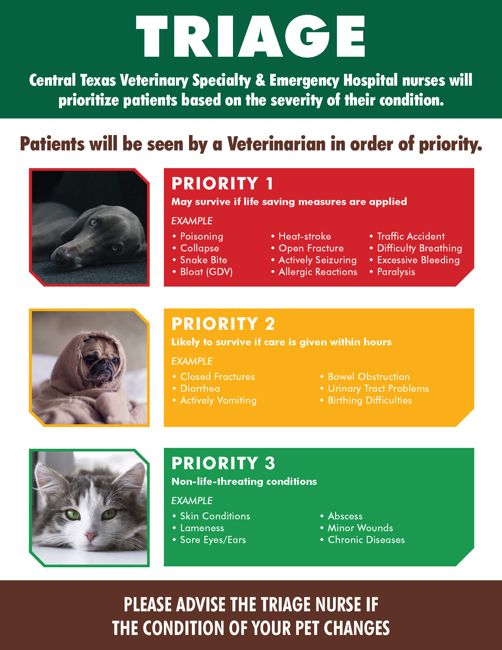 Pet emergency patient prioritization