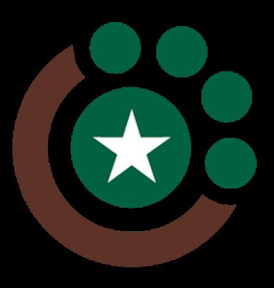 CTVSEH-Logo-Icon